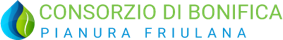 logo cbpf